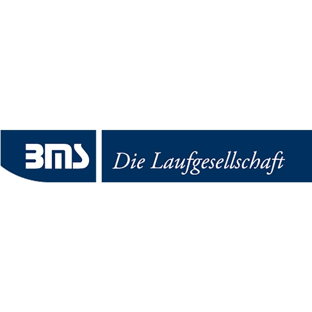 https://www.kinderrheuma.de/wp-content/uploads/logo_bms.png